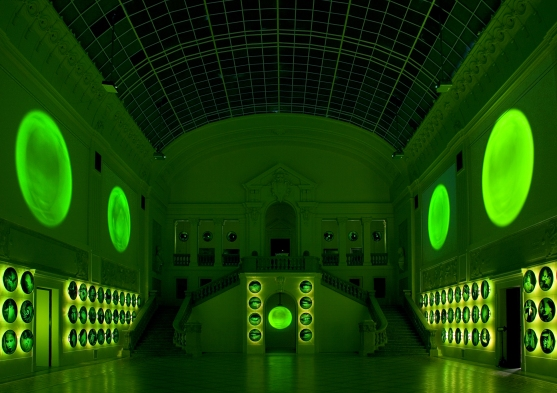 Izabella Gustowska. Art of Choice, 2006. Multimedia installation. National Museum in Poznań, 2007. Courtesy and © the artist.
